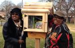Detroit Little Libraries